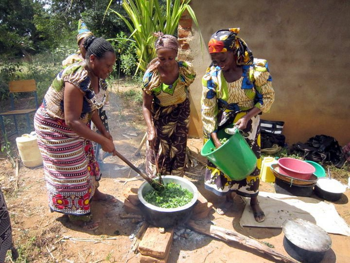 Vegetables such as traditional leafy vegetables are a fast-moving and basic commodity, hence a good source of income in addition to nourishing the group's households. Credit: Bioversity International/F.Mattei