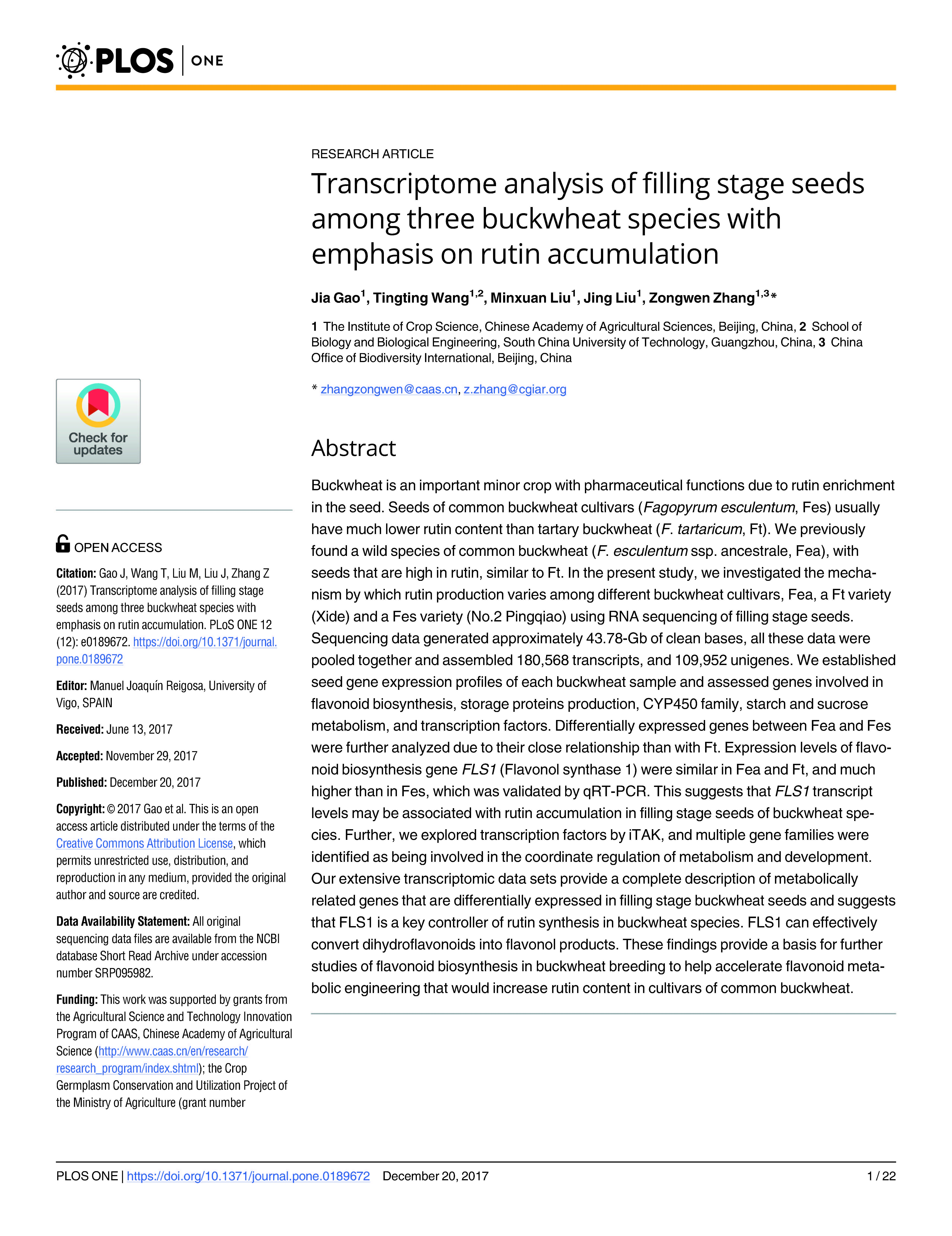 File Fagopyrum Esculentum Plant Boekweit Plant Jpg: Transcriptome Analysis Of Filling Stage Seeds Among Three