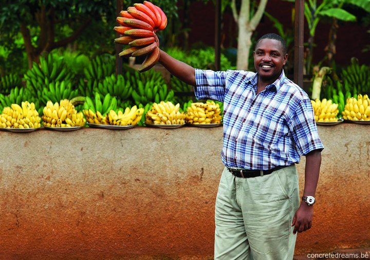 Diverse banana varieties for sale in Uganda. Credit: concretedreams.be, courtesy of Musarama