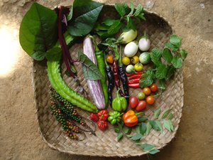 Vegetables from Nepal. Credit: LI-BIRD\A.Subedi
