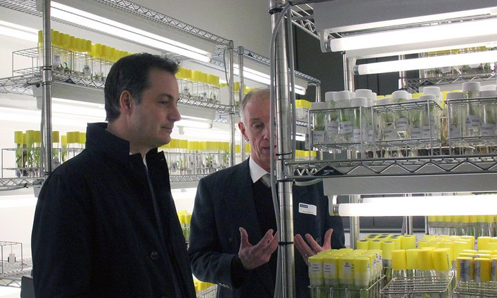 Belgium Deputy Prime Minister and Minister for Development Cooperation, Alexander De Croo, visiting Bioversity International's banana genebank hosted at the Catholic University of Leuven (KU Leuven). Credit: Bioversity International/N.Capozio