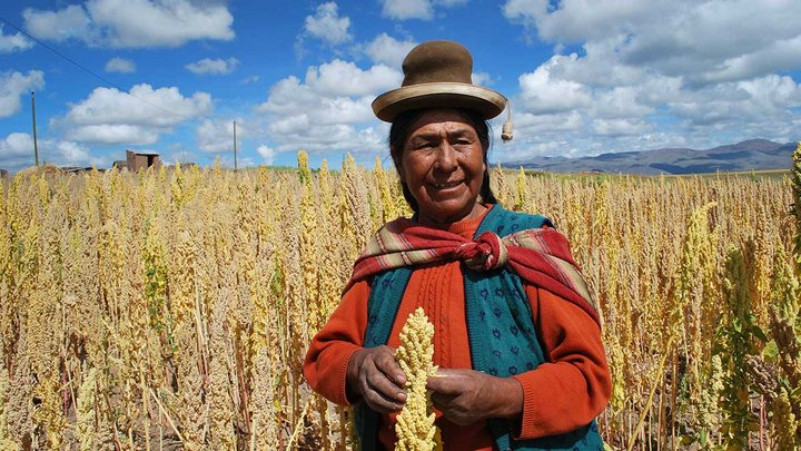 Quinoa farmer in Bolivia. Credit: Bioversity International/S. Padulosi