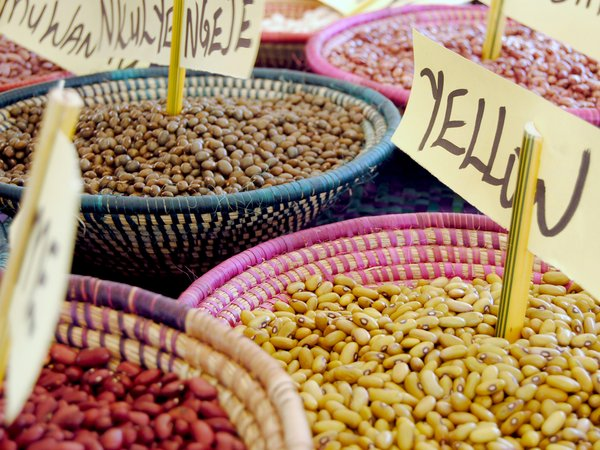 Seed fair in Nakaseke, Uganda, to raise awareness of traditional varieties of beans.