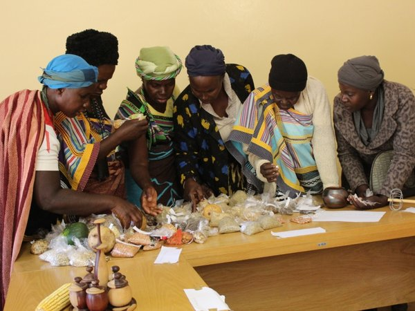 At the first ever held seed fair in Mutale, Limpopo province, South Africa. Credit: Bioversity International/R. Vernooy