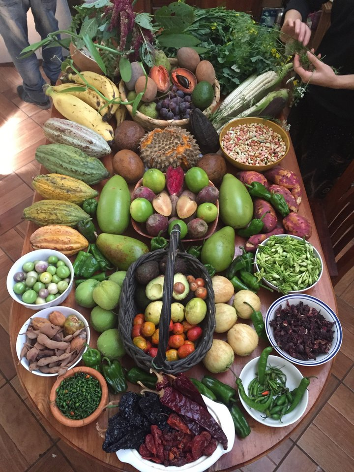 Local agrobiodiversity in Guatemala. Credit: Bioversity International/R. Robitaille