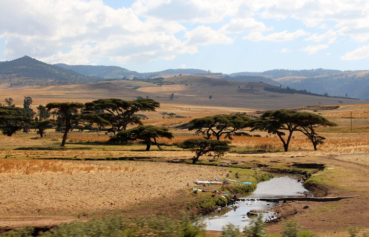 Washing clothes by the river. The Ethiopian agricultural landscape is dappled with African acacia trees (Vachellia abyssinica). Credit: Bioversity International/C. Zanzanaini