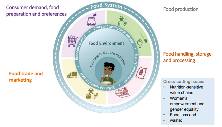 Food system chart from presentation by Gina Kennedy (Bioversity International), 'From Sustainable Farms to Better Nutrition' symposium