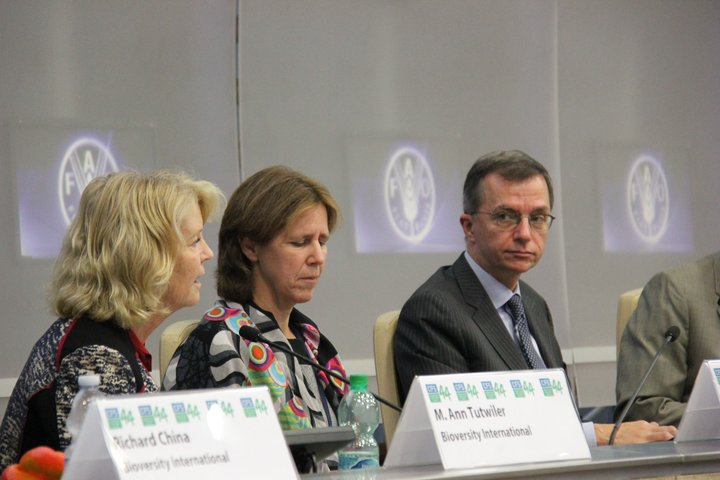 Panelists at the Mainstreaming Agrobiodiversity book launch at CFS44 in Rome, Italy. Credit: Bioversity International/P.Gallo