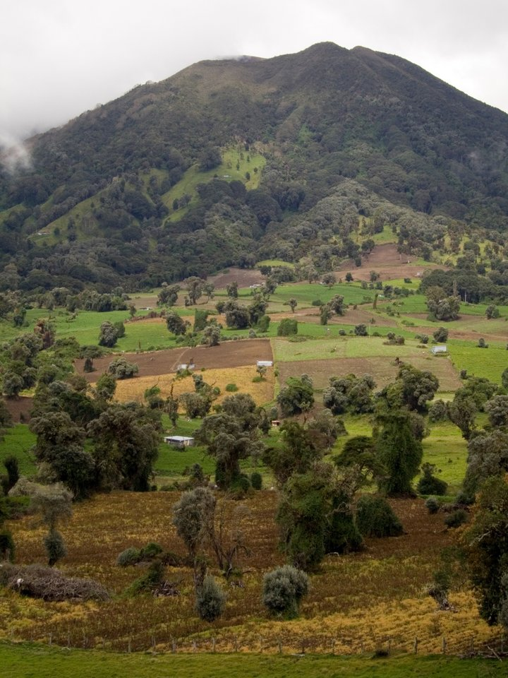 Agricultural landscape in Turrialba, Costa Rica.