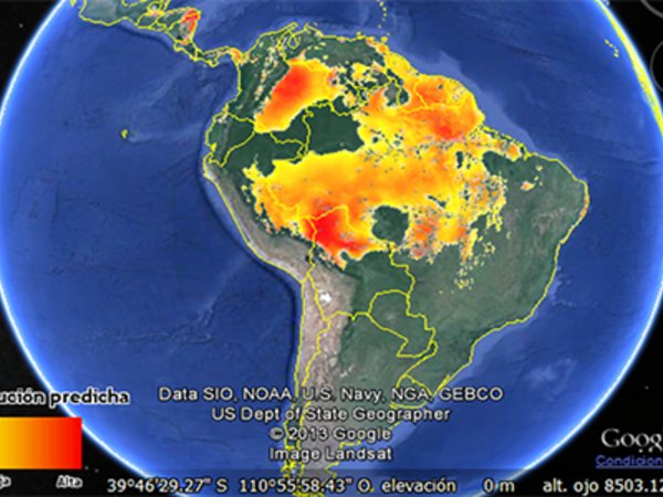 Google Earth interface used to validate modelled distribution maps of Brazil nut in the Americas