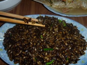 Local food dish of insects. Credit: Bioversity International/J. Raneri