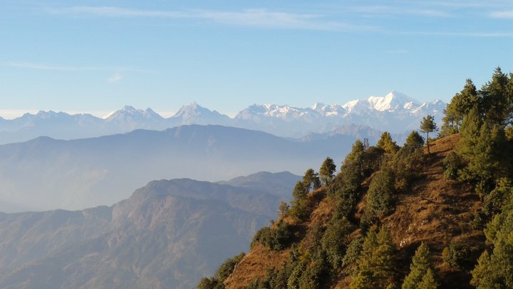 Forests patches on the lower hills of the Himalayas, Nepal. Credit: Bioversity International/G. Meldrum