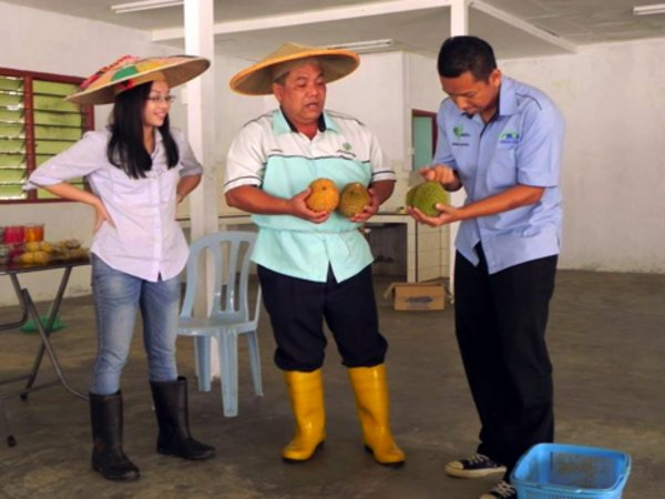Researchers perform theatre play to explain value chain concepts to farmers. Credit: Bioversity International/H.Lamers