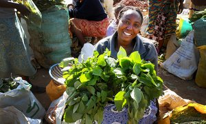 Traditional African leafy vegetables for sale at a market in Kenya. Credit: Bioversity International/Y.Morimoto