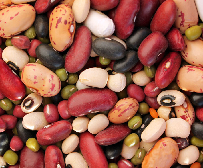 Assorted beans and pulses (Phaseolus vulgaris, Lens culinaris). Credit: Bioversity International/C.Zanzanaini