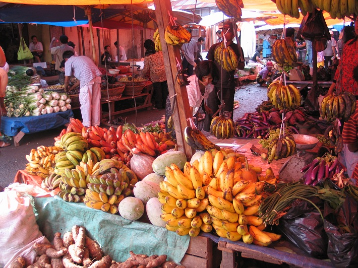 bioversityinternational.org - Our Biodiversity, Our Food, Our Health
