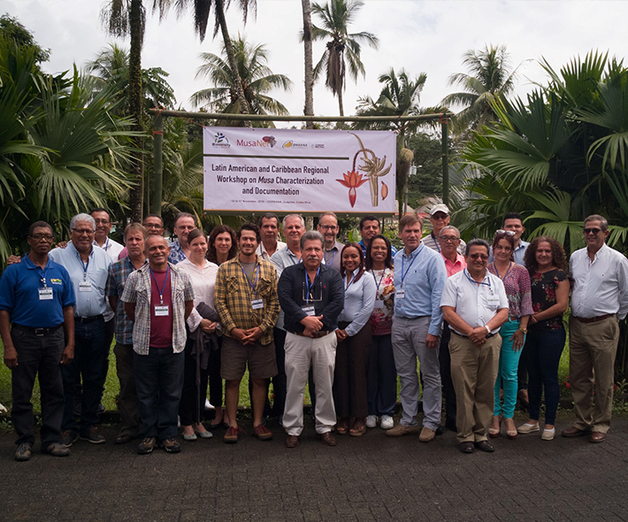 Participants in the MusaNet Regional Workshop on Musa Characterization and Documentation. Credit: Bioversity International/M.Ruas
