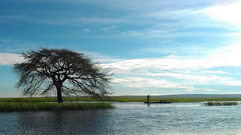 Along Barotse Floodplain. Credit:Worldfish/Froukje Kruijssen