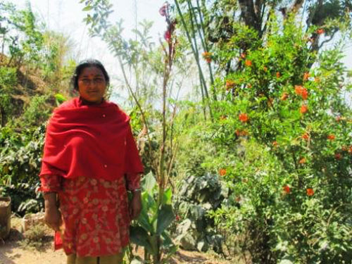 Parbati, Nepalese farmer, in her home garden. Credit: Bioversity International/M.Elias