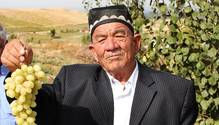 An Uzbek farmer proudly showing his grapes. Credit: Bioversity International/P. Sands