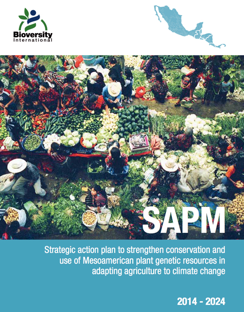 SAPM - Strategic Action Plan for Mesoamerica
