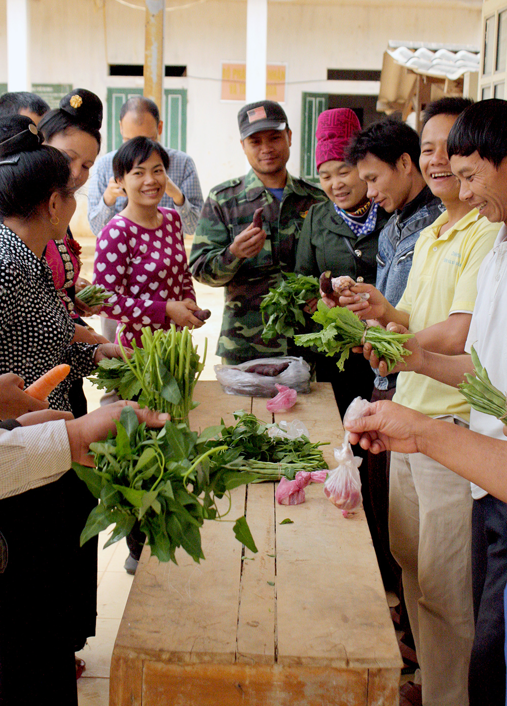 Through diversity clubs, communities in the Mai Son district of Vietnam were encouraged to have a more diversified production of underutilized species, including nutritious dark green leafy vegetables. Credit: Bioversity International/J. Raneri