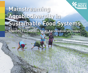 Mainstreaming Agrobiodiversity in Sustainable Food Systems