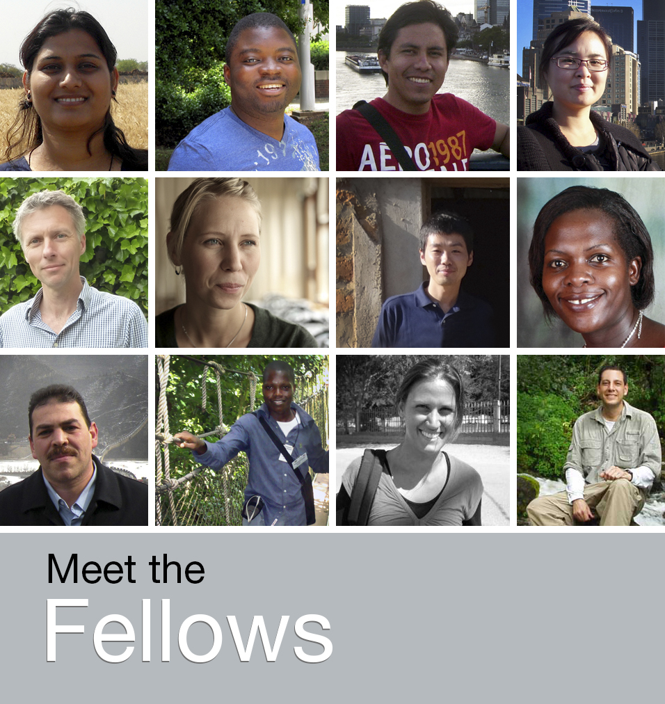 Meet our Fellows