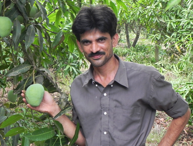 Dattatreya Hegde, a farmer from the village of Salkani in Uttara Kannada, Karnataka, India. He maintains a large number of local varieties of mango and kokum. Credit: Bioversity International/B. Sthapit