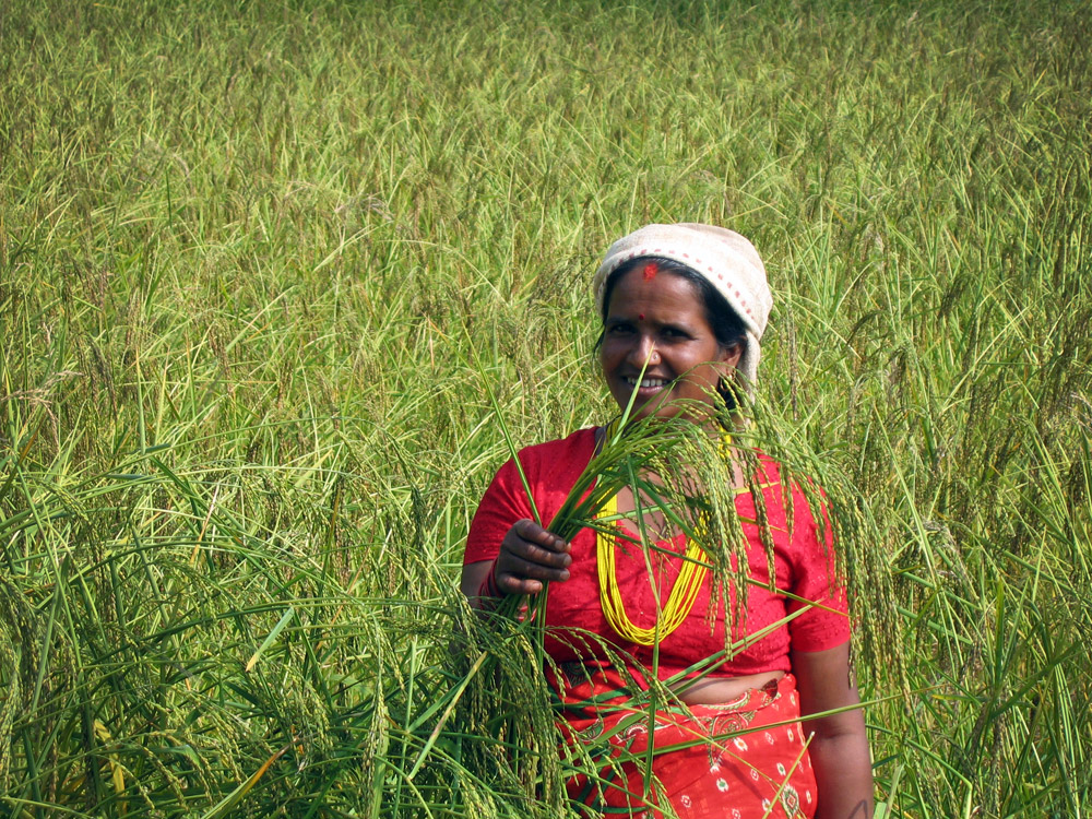 how to become a farmer in nepal